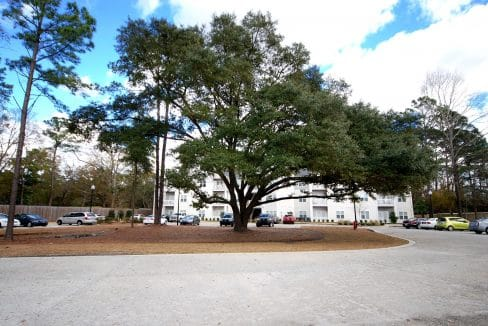Oak Court Apartments of Wilmington Near Randall Parkway and Walking Distance to UNCW - 245 S Kerr Avenue, Wilmington, NC 28403